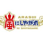 【日本テレビ「嵐にしやがれ」に出演!】
